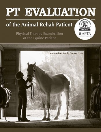 PT Examination of the Equine Patient
